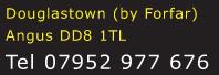 Douglastown (by Forfar), DD8 1TL, 07952977676